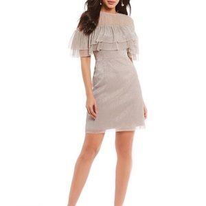 Gianni Bini Nicole Blush Shimmer Dress